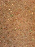 Kurk behang  goud met kleurtjes
